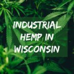 The Revival of Industrial Hemp in Wisconsin