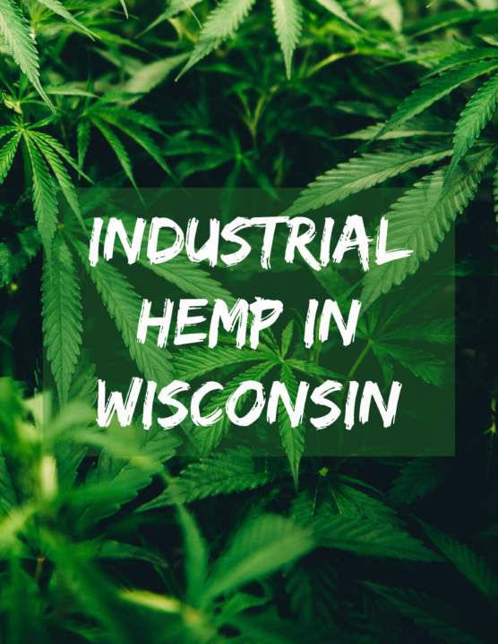 The Revival of Industrial Hemp in Wisconsin